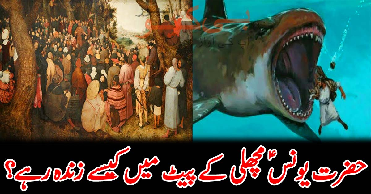 حضرت یونس (ع) مچھلی کے پیٹ میں کیسے زندہ رہے؟