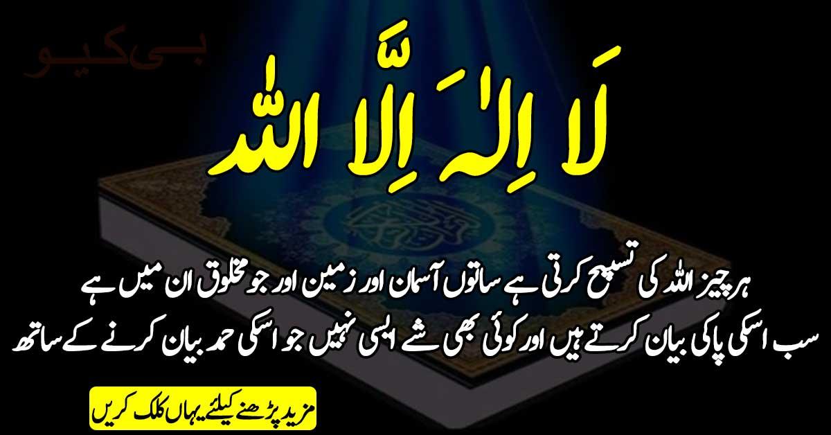 جو شخص لا الہ الا اللہ کا قائل ہو
